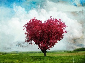 pink-heart-tree